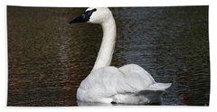 Beach Towel featuring the photograph Peaceful Swan by Sue Harper
