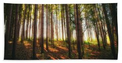 Peaceful Wisconsin Forest 2 - Spring At Retzer Nature Center Beach Towel by Jennifer Rondinelli Reilly - Fine Art Photography