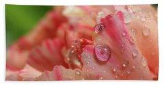 Peach And Pink Carnation Petals Beach Towel