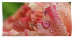 Beach Towel featuring the photograph Peach And Pink Carnation Petals by Angela Murdock