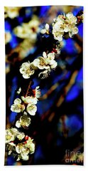 Peachcot Blooms Announce Spring In Colorado II Beach Sheet