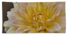 Peaches And Cream Dahlia Beach Sheet