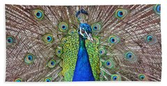 Beach Towel featuring the photograph Peacock Displaying His Plumage by Jim Fitzpatrick