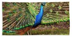 Peacock In Beacon Hill Park Beach Sheet