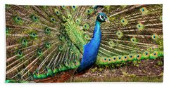 Peacock In Beacon Hill Park Beach Towel by Peggy Collins
