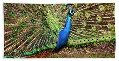 Peacock In Beacon Hill Park Beach Towel