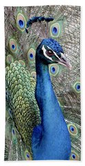 Peacock Portrait Beach Towel by Bob Slitzan