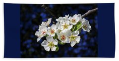 Pear Blossoms And Georgia Blue 1 Beach Towel