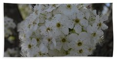 Pear Blossoms Beach Sheet