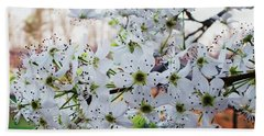Pear Tree Beach Towel by Donna Dixon