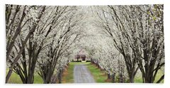 Beach Towel featuring the photograph Pear Tree Lane by Benanne Stiens