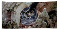Peek A Boo Owl Beach Towel