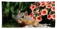 Peek-a-boo Squirrel Beach Towel