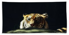 Beach Towel featuring the photograph Peek-a-boo Tiger by Angela DeFrias