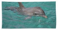 Peeking Dolphin Beach Towel