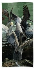 Pelican Mosh Pit Beach Towel