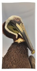 Pelican Portrait Beach Sheet