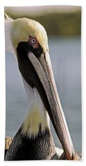 Beach Towel featuring the photograph Pelican Portrait by Sally Weigand