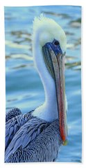 Pelican Pose Beach Sheet by Shoal Hollingsworth