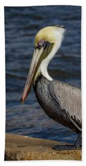 Pelican Profile 2 Beach Towel by Jean Noren