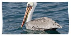 Beach Sheet featuring the pyrography Pelican by Shoal Hollingsworth