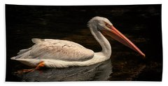 Pelican Swimming In Salisbury Beach Sheet