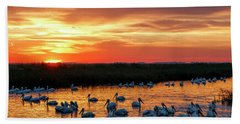 Pelicans At Sunrise Beach Towel by Rob Graham