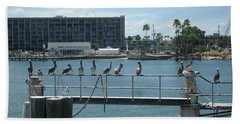 Pelicans In A Row Beach Towel by Val Oconnor