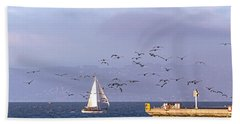 Beach Towel featuring the photograph Pelicans Pelicans by Kate Brown