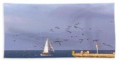 Pelicans Pelicans Beach Sheet