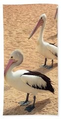 Pelicans Seriously Chillin' Beach Towel