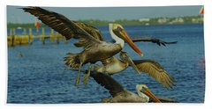 Beach Sheet featuring the photograph Pelicans Three Amigos by Larry Nieland
