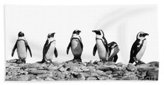Penguins Beach Sheet by Delphimages Photo Creations
