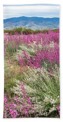 Penstemon At Black Hills Beach Towel