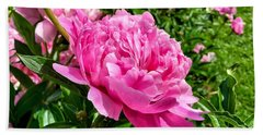 Peonies In Spring Beach Towel