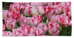 Peppermint Tulip Field IIi Beach Towel