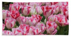 Peppermint Tulip Field IIi Beach Sheet
