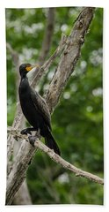 Perched Double-crested Cormorant Beach Sheet