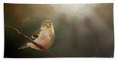Beach Towel featuring the photograph Perched Goldfinch by Darren Fisher