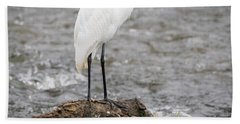 Beach Towel featuring the photograph Perched Great Egret by Ricky L Jones