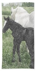 Percheron Colt And Mare In Pasture Digital Art Beach Towel