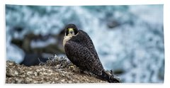 Peregrine Falcon - Here's Looking At You Beach Towel