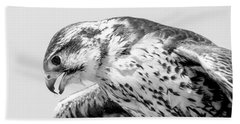 Peregrine Falcon In Black And White Beach Towel