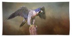 Peregrine Falcon Taking Flight Beach Sheet