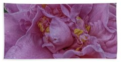 Beach Towel featuring the photograph Perfectly Pink by Judy Hall-Folde