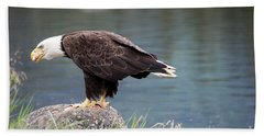 Petersburg Ak Bald Eagle 4 Beach Towel