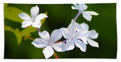 Petite Plumbago Blossoms Beach Sheet