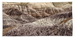Petrified Forest National Park 2 Beach Towel