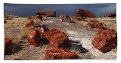 Beach Towel featuring the photograph Petrified Forest National Park by James Peterson