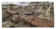 Petrified Remains Beach Towel by Alan Toepfer